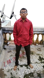 Jayesh Shrimali 3D; Web Developer; Logo Designer