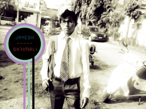 Jayesh Shrimali Web Developer